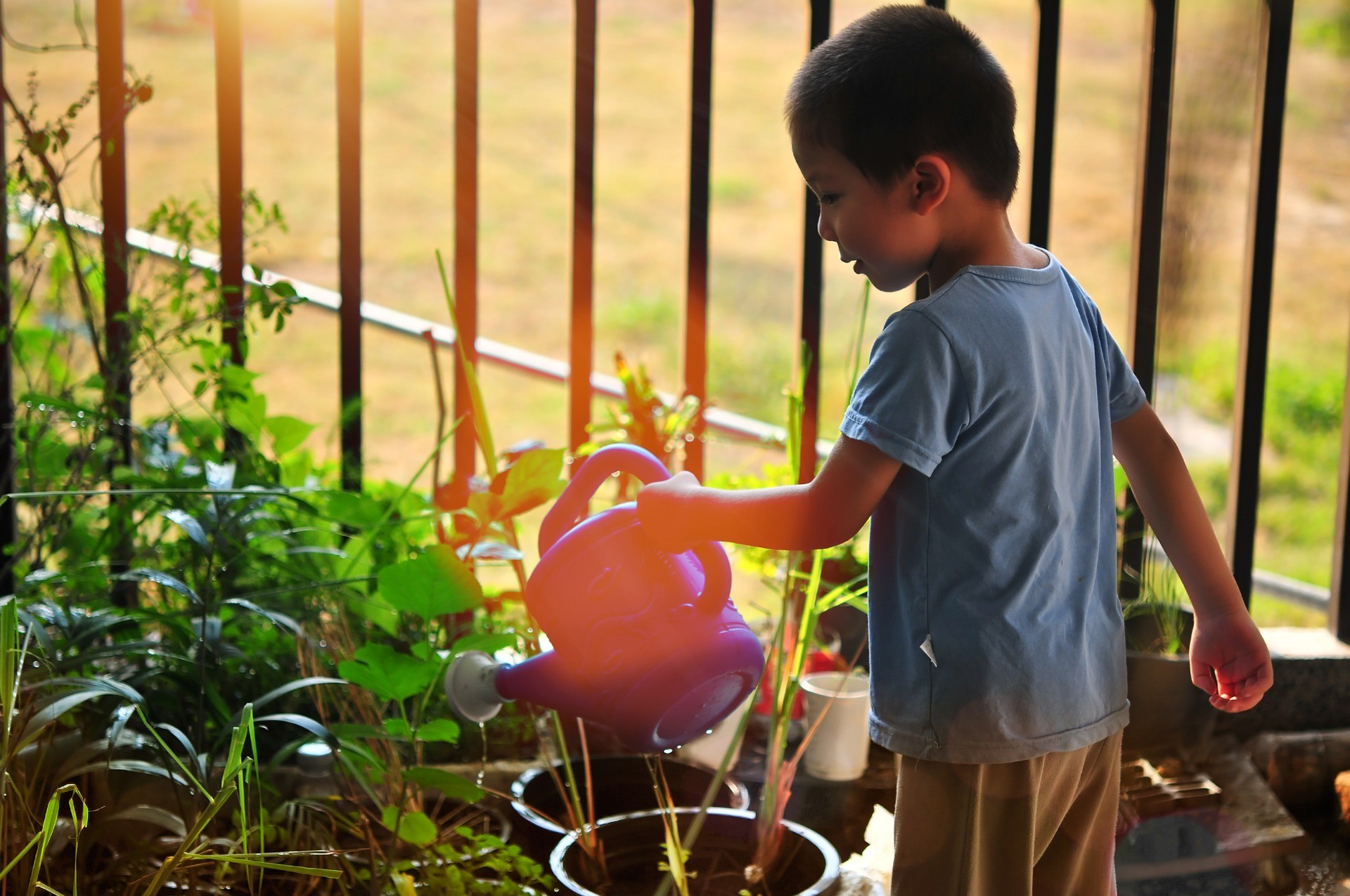 A boy watering potted plants with a watering can