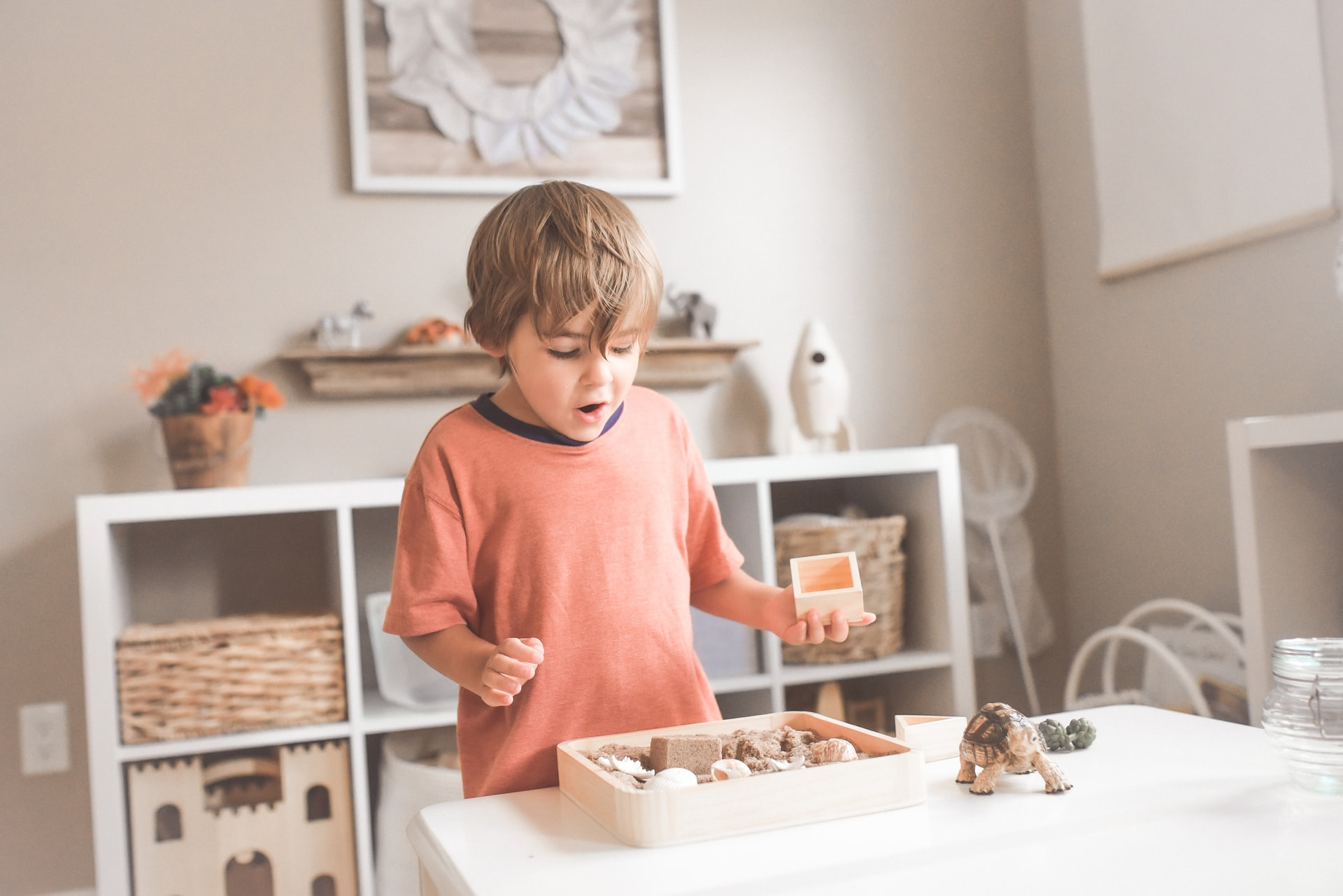 boy with a fossil set