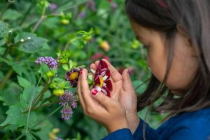 A girl takes a close look at a flower